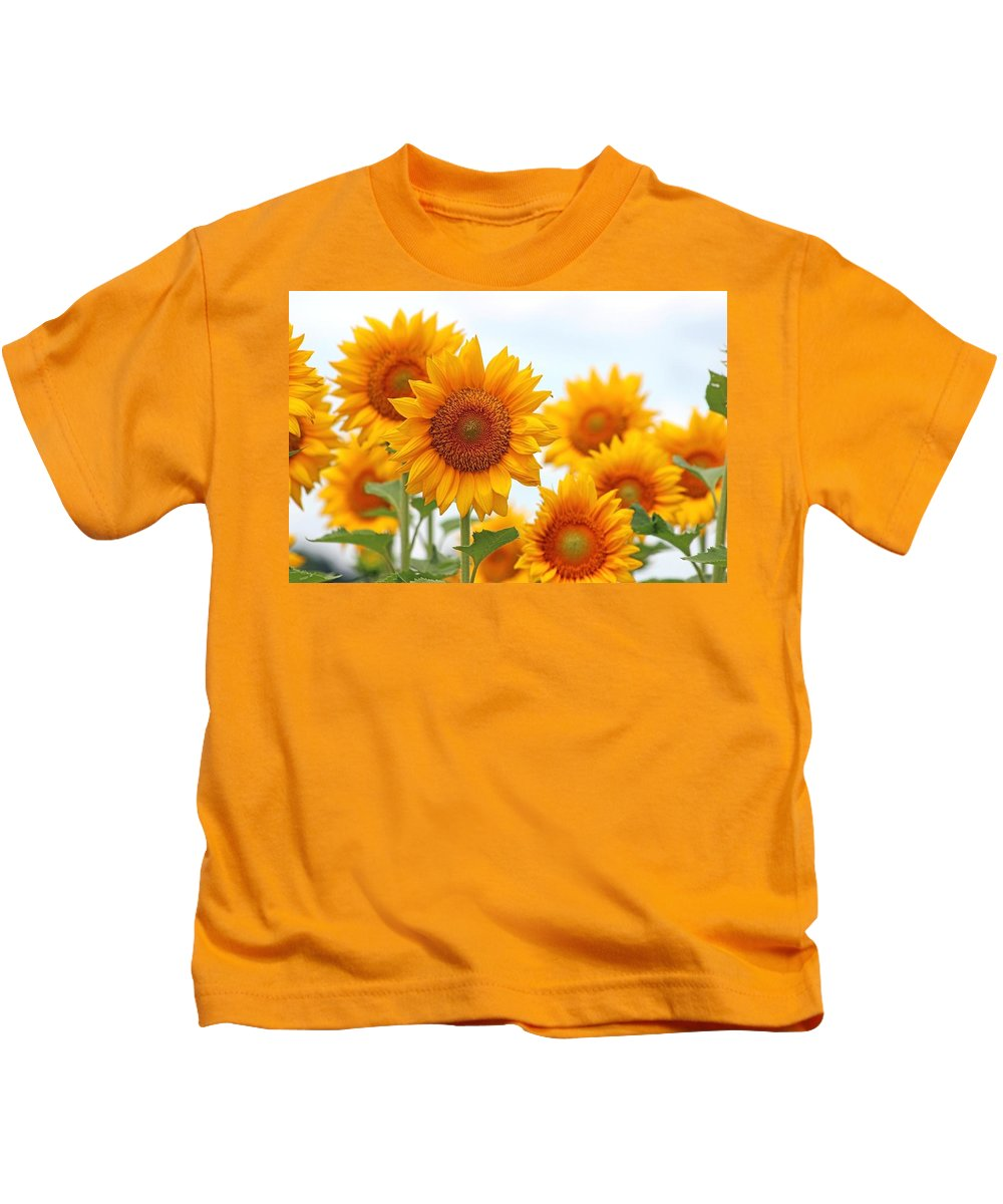Flowers Kids T-Shirt featuring the photograph Sunflowers by Gayle Miller