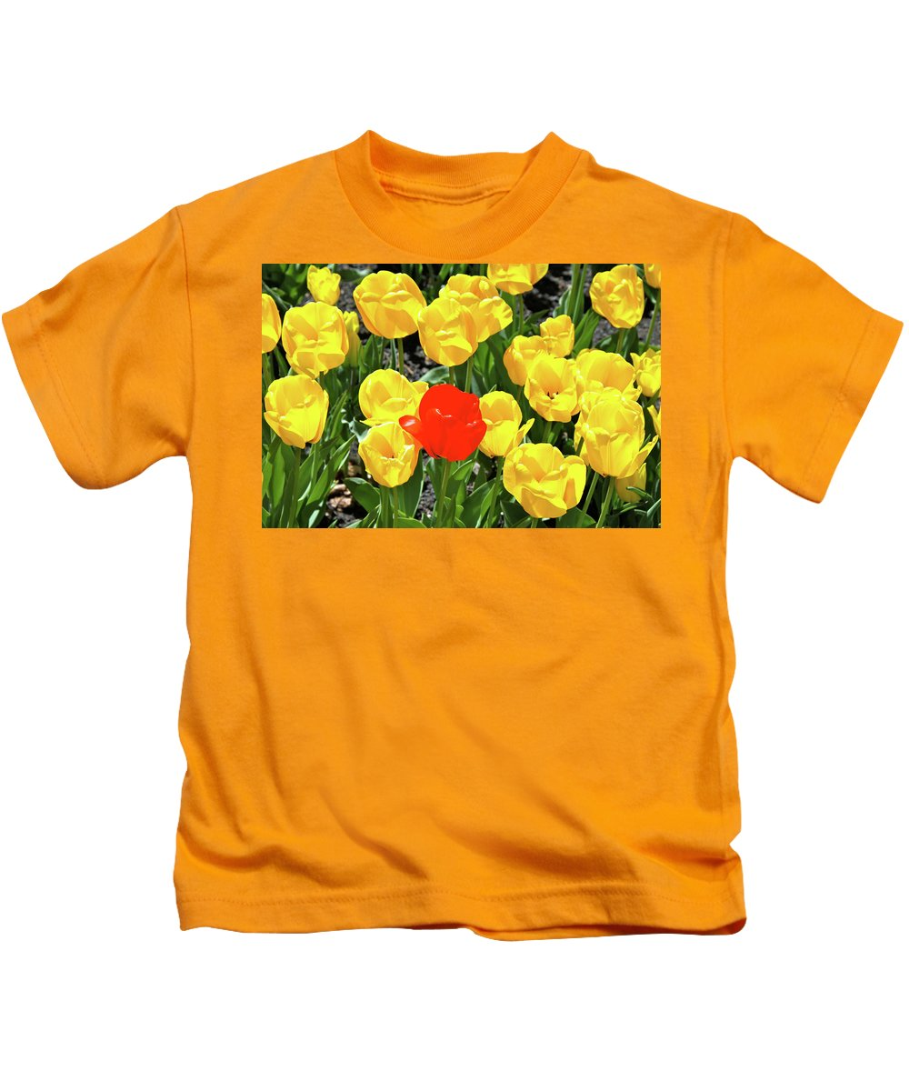 Tulips Kids T-Shirt featuring the photograph Yellow And One Red Tulip by Ed Riche