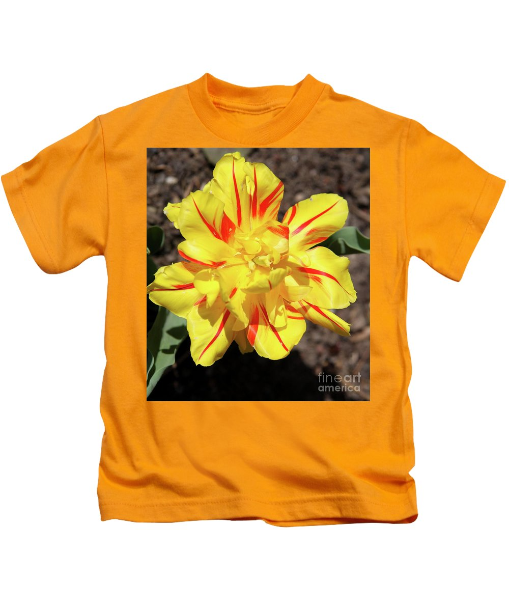 Tulip Kids T-Shirt featuring the photograph Yellow And Red Tulip by Christiane Schulze Art And Photography