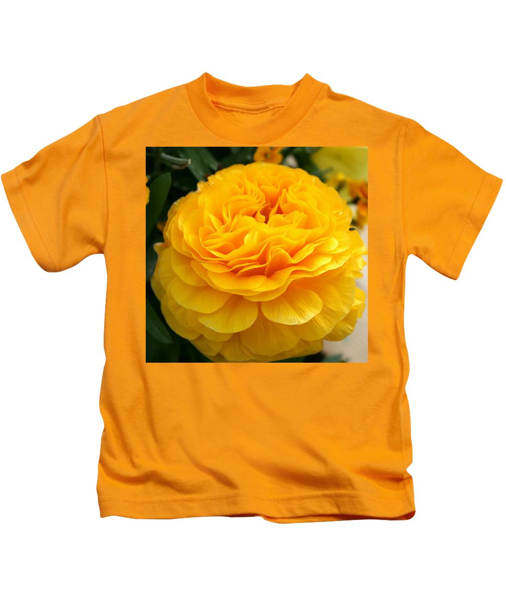 Buttercup Kids T-Shirt featuring the photograph Yellow Buttercup by Christiane Schulze Art And Photography