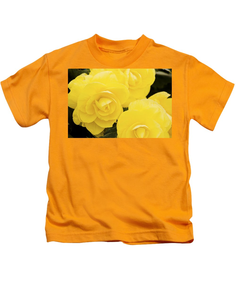 Flower Kids T-Shirt featuring the photograph Yellow Roses by Maj Seda