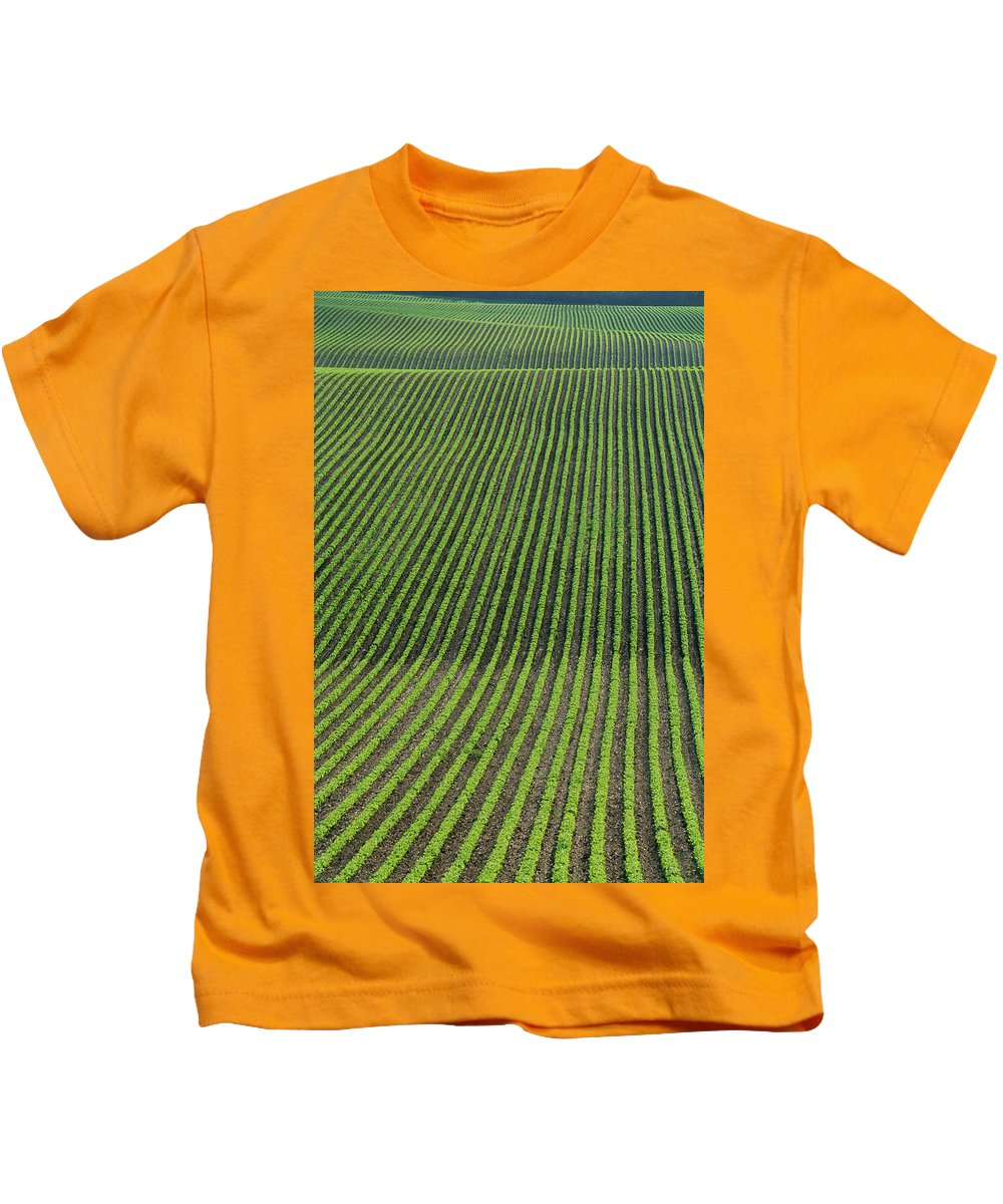 Beans Kids T-Shirt featuring the photograph Bean Field, Holland, Manitoba by Mike Grandmailson
