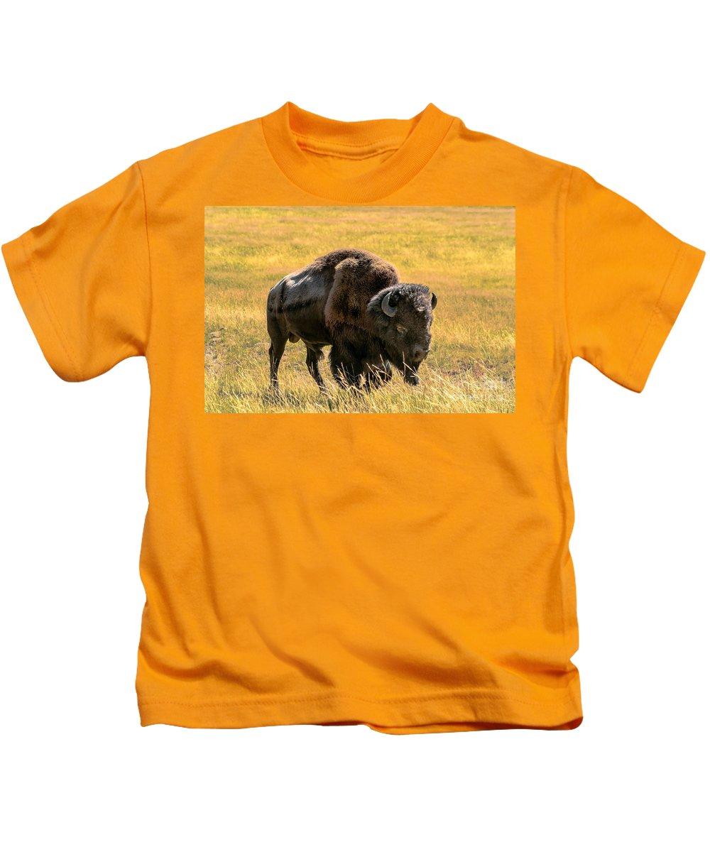 Animals Kids T-Shirt featuring the photograph Buffalo by Robert Bales