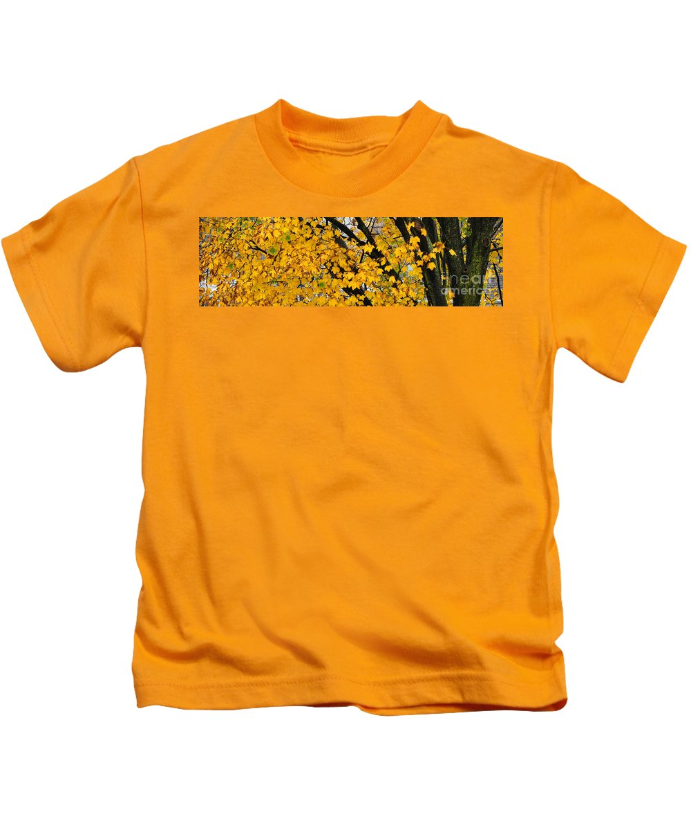 Maple Tree Kids T-Shirt featuring the photograph Maple Tree Panorama by Mike Nellums