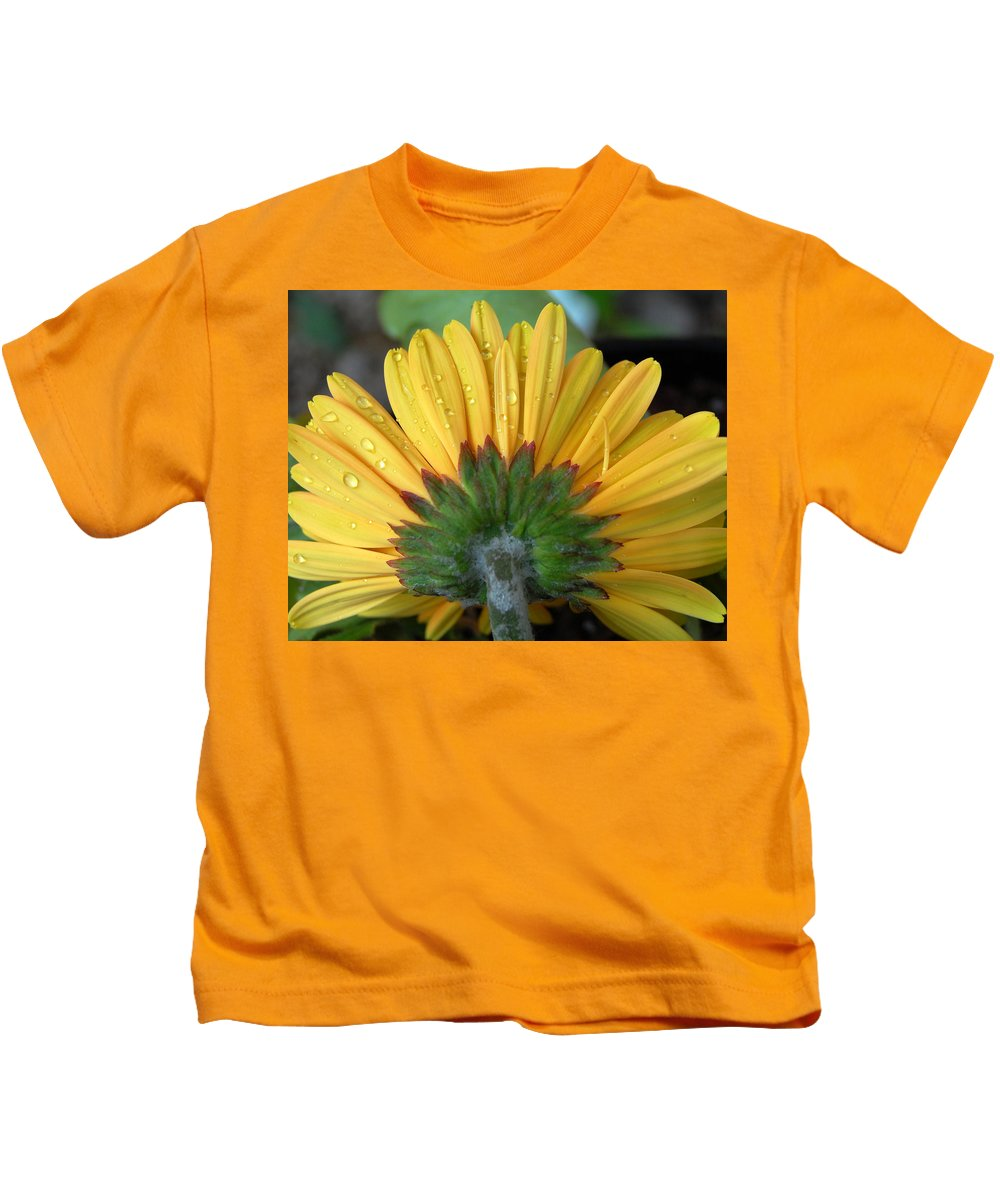 Flowers Kids T-Shirt featuring the photograph Water Drops On Gerbera Daisy by Amy Fose