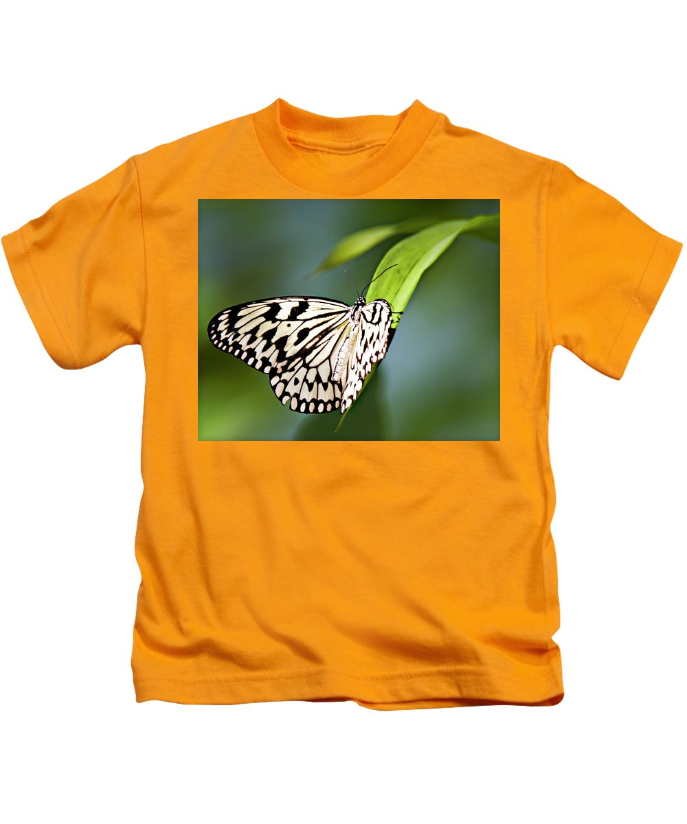 Butterfly Kids T-Shirt featuring the photograph Rice Paper Butterfly 5 by Walter Herrit