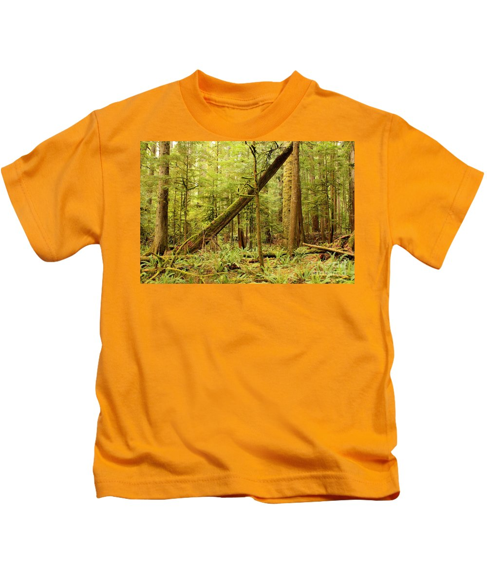 Washington Landscape Kids T-Shirt featuring the photograph A Whisper In The Rainforest by Carol Groenen
