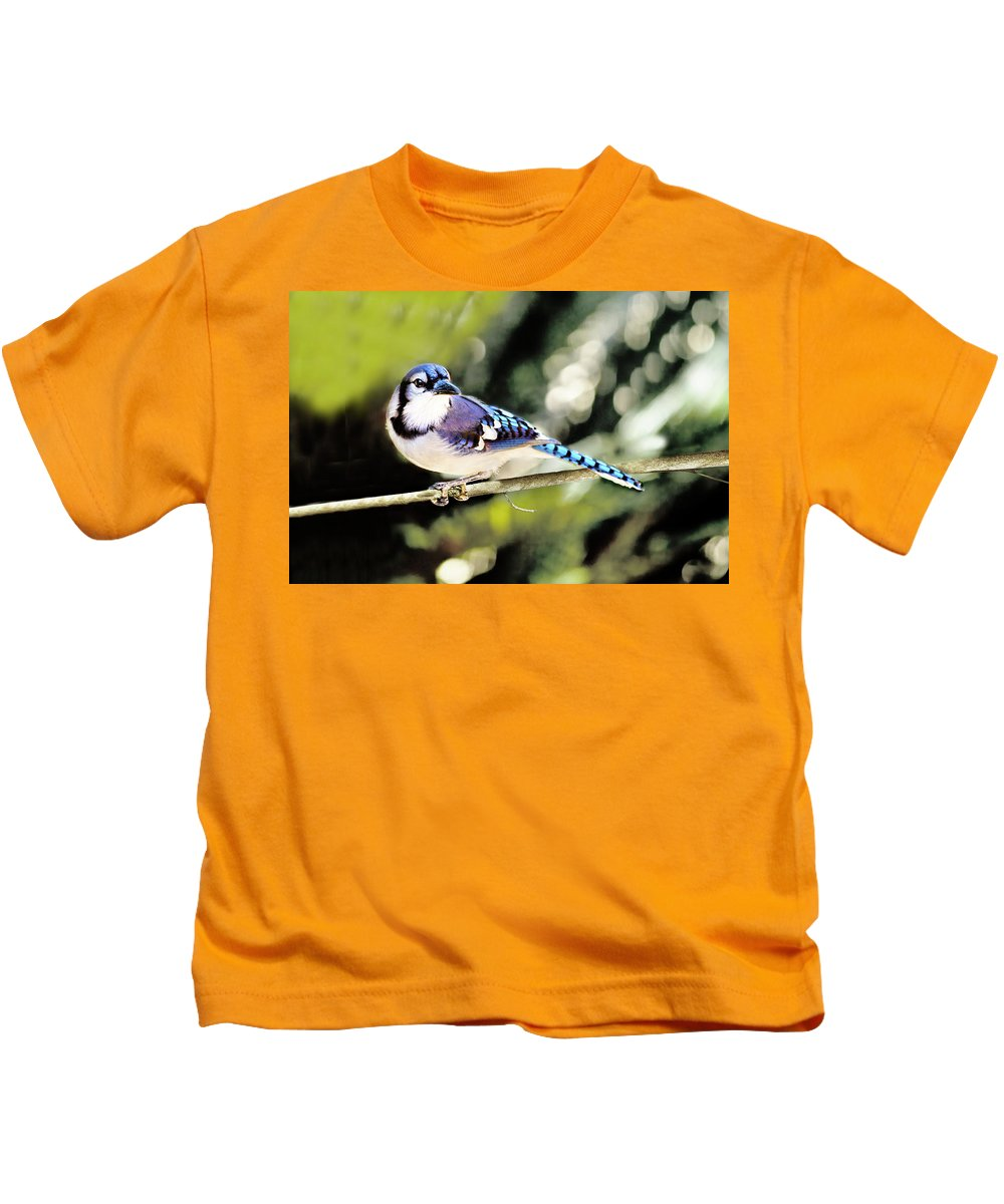 Bird Kids T-Shirt featuring the photograph American Blue Jay On Alert by Kay Brewer