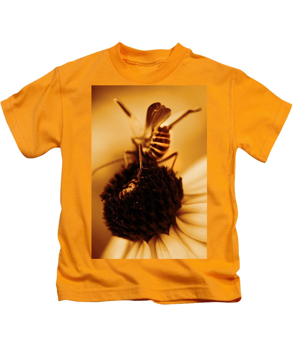 Black Eyed Susans Kids T-Shirt featuring the photograph Arabesque - Gold by Angela Rath