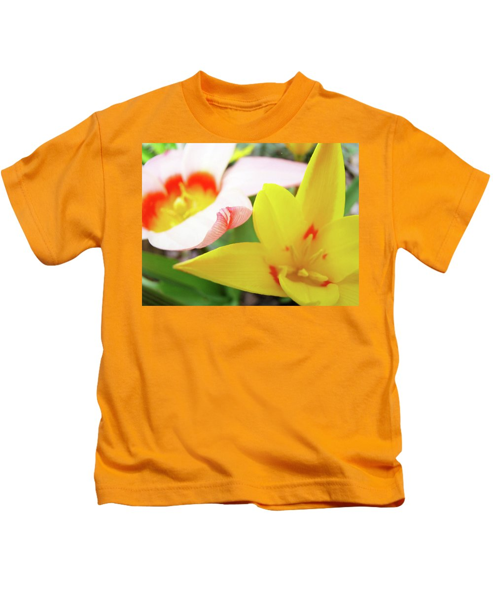 Tulip Kids T-Shirt featuring the photograph Art Prints Pink Tulip Yellow Tulips Giclee Prints Baslee Troutman by Baslee Troutman