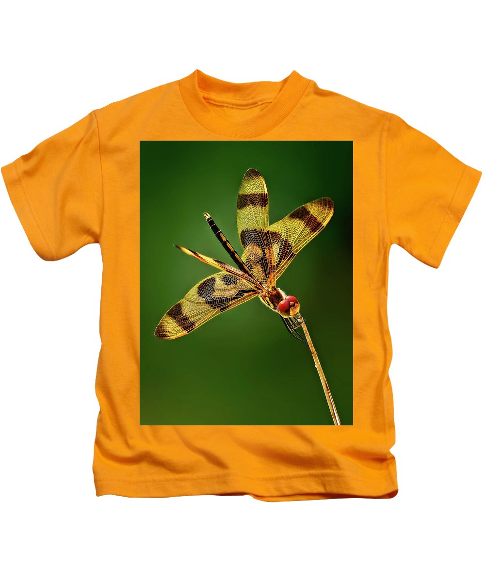 Dragonfly Kids T-Shirt featuring the photograph Beauty Marks by Pedro Lastra