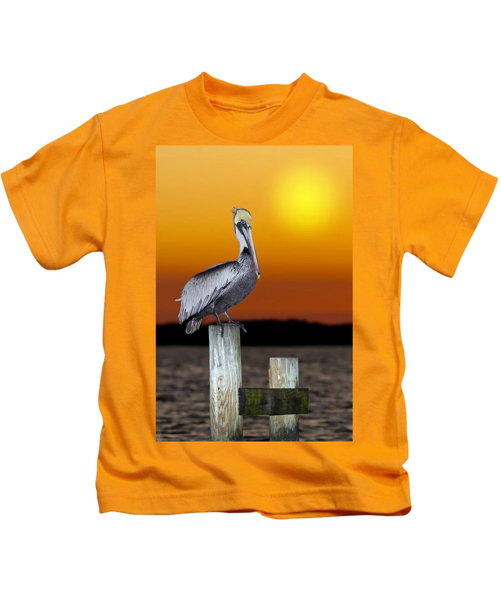 Brown Pelican Kids T-Shirt featuring the photograph Brown Pelican by Janet Fikar