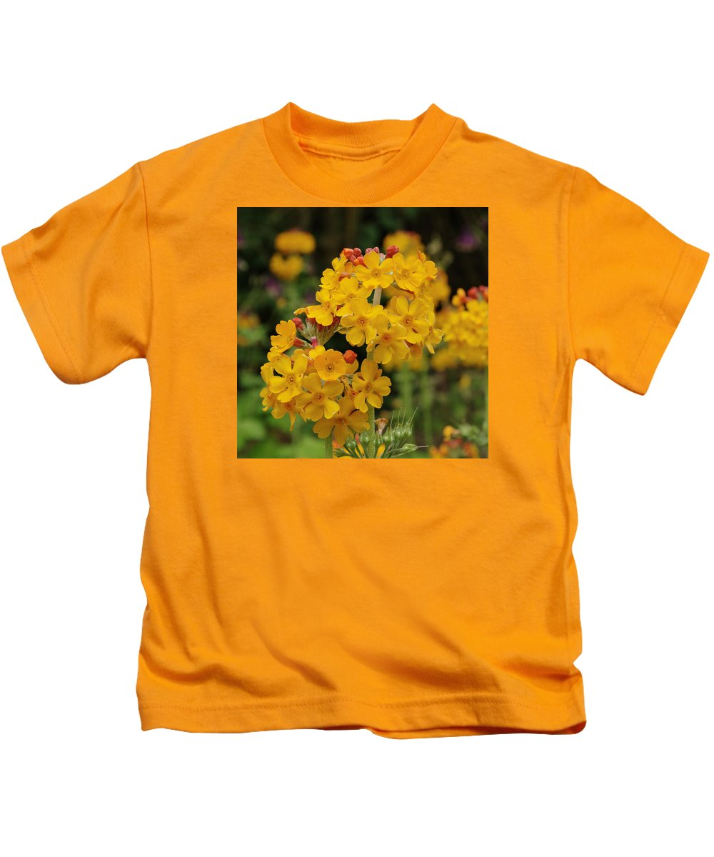 Flower Kids T-Shirt featuring the photograph Candelabra Primula by Adrian Wale