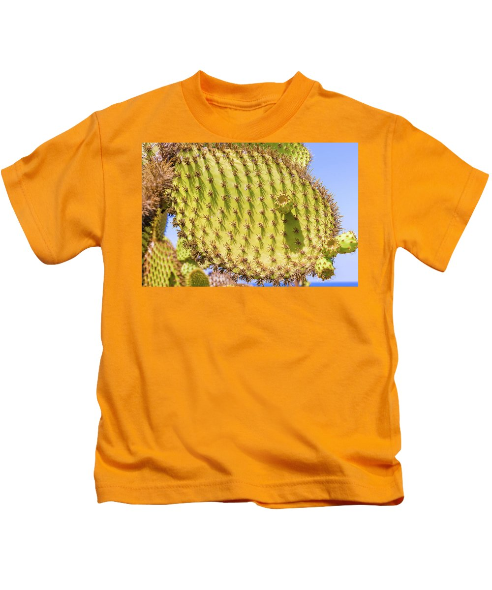 Cactus Kids T-Shirt featuring the photograph Detail Of Cactus In Galapagos by Marek Poplawski