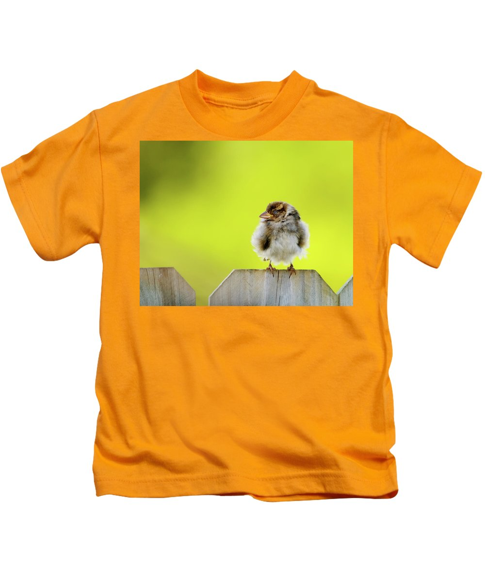 Sparrow Kids T-Shirt featuring the photograph Dream Sparrow by Betty LaRue