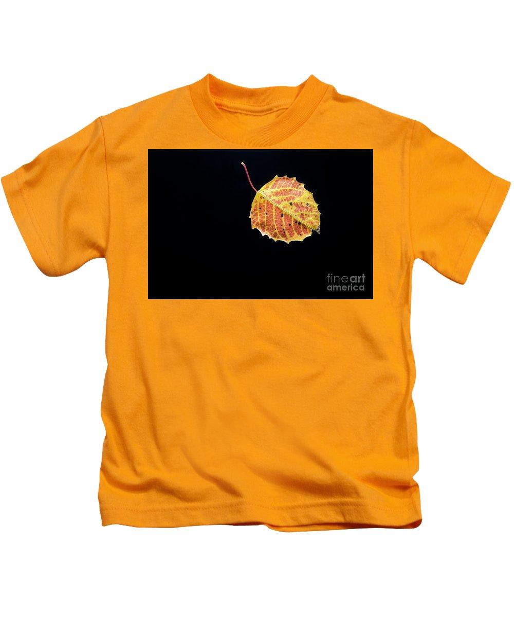 Minnesota Kids T-Shirt featuring the photograph Falling Birch Leaf by David Parker