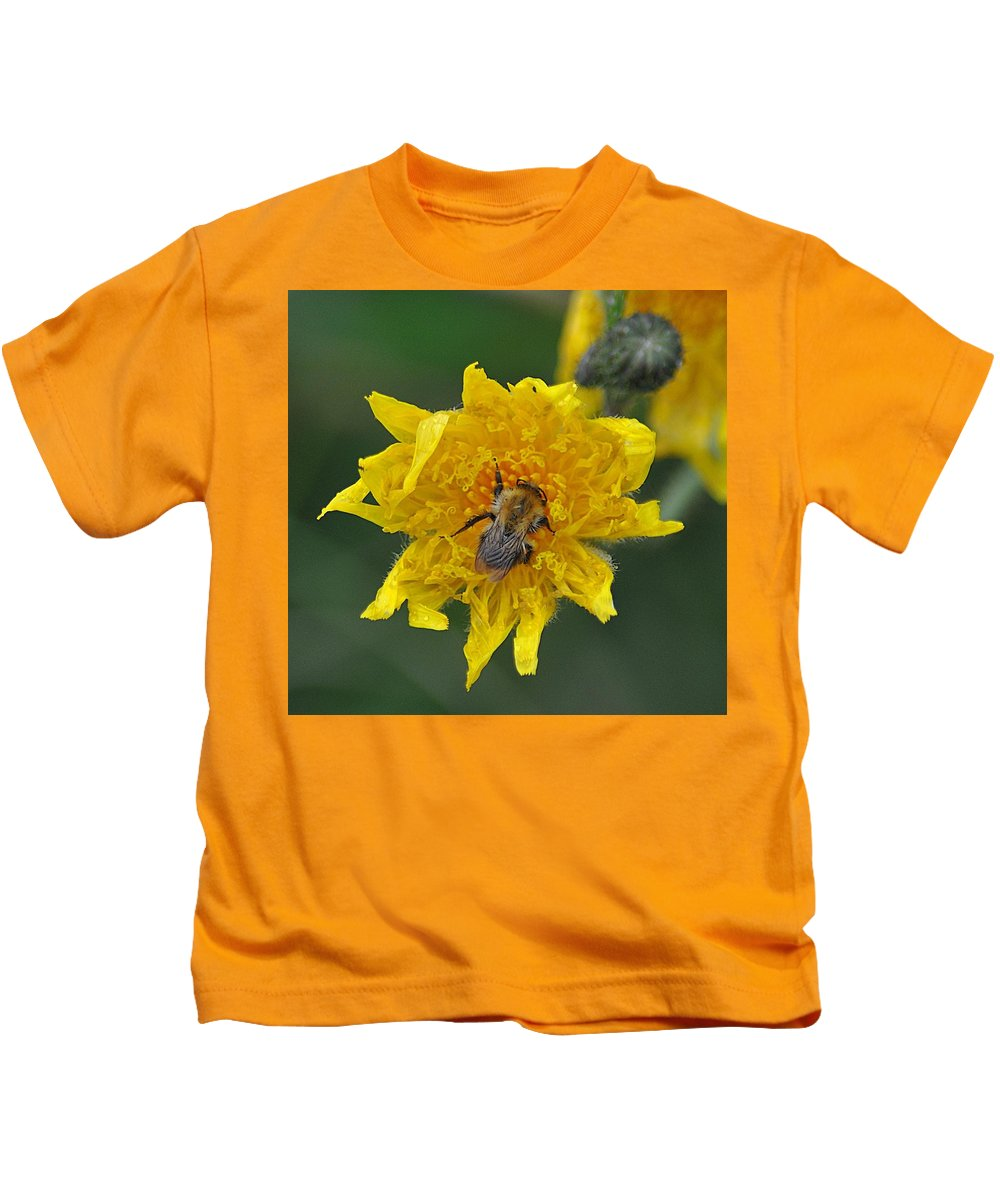 Insect Kids T-Shirt featuring the photograph Feeding 2 by John Hughes
