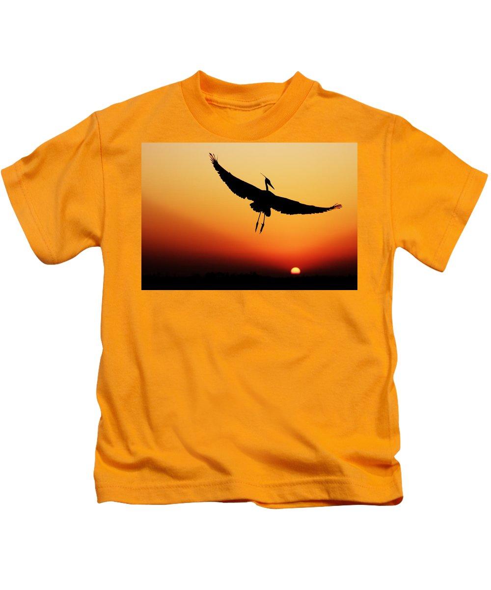 Silhouette Kids T-Shirt featuring the photograph Flight by Janet Fikar