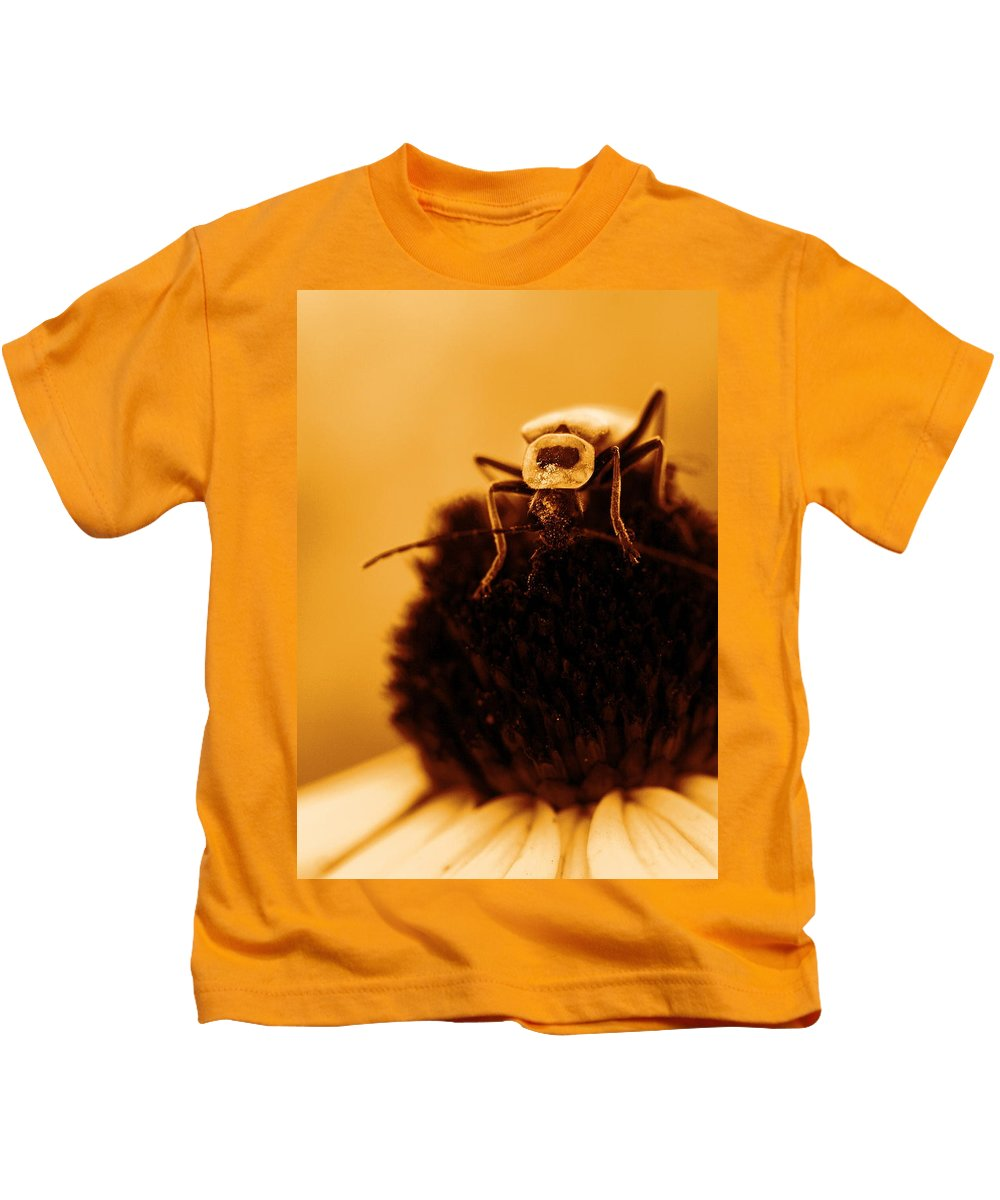 Black Eyed Susan Kids T-Shirt featuring the photograph Hello There by Angela Rath