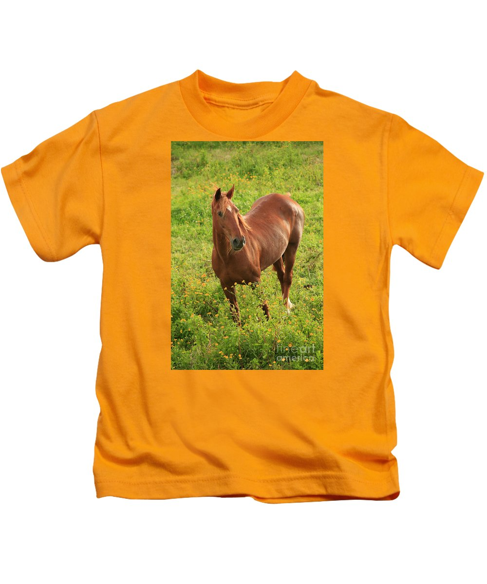 Animals Kids T-Shirt featuring the photograph Horse In A Field With Flowers by Gaspar Avila