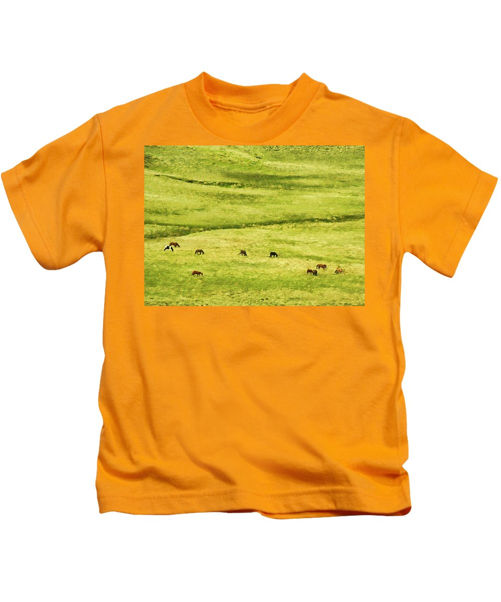 Argentina Kids T-Shirt featuring the photograph Horses by Osvaldo Hamer