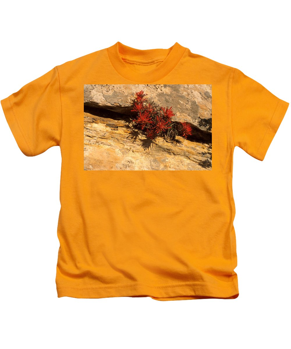 Indian Paint Brush Kids T-Shirt featuring the photograph Indian Paint Brush by Jerry McElroy