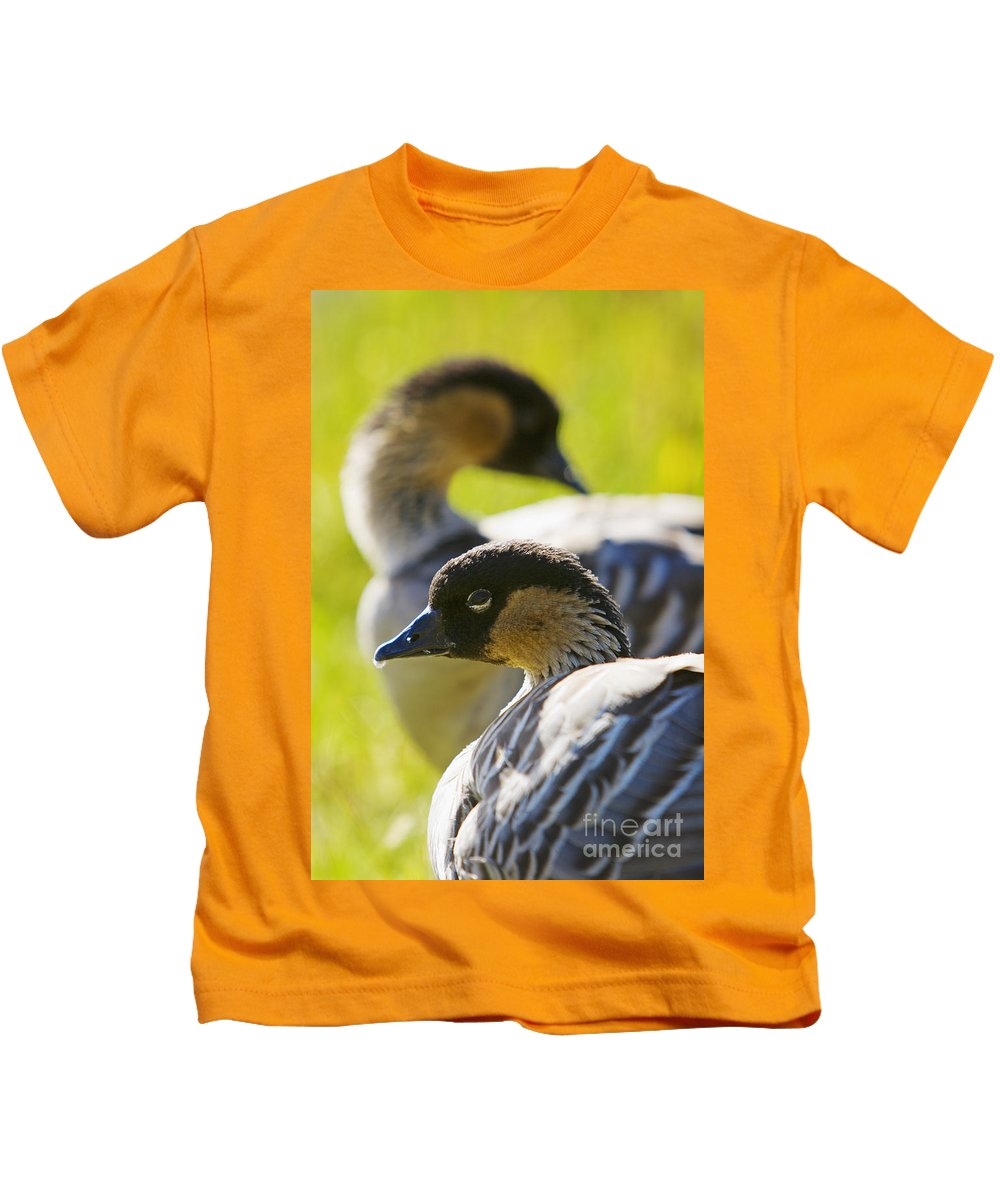 Animal Art Kids T-Shirt featuring the photograph Nene Geese by Ron Dahlquist - Printscapes