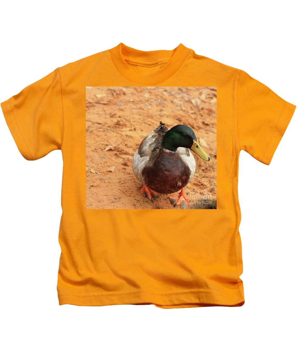 Mallard Photography Kids T-Shirt featuring the photograph Number 17 by Kim Henderson