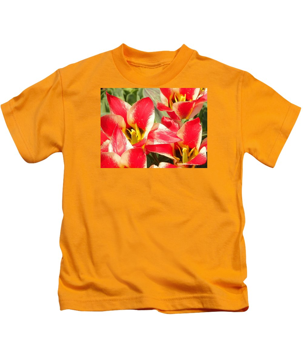 Flowers Kids T-Shirt featuring the photograph Ochre Army by Judith L Schade