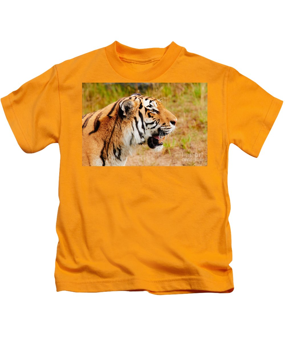 Siberian Kids T-Shirt featuring the photograph Siberian Tiger In Profile by Nick Biemans