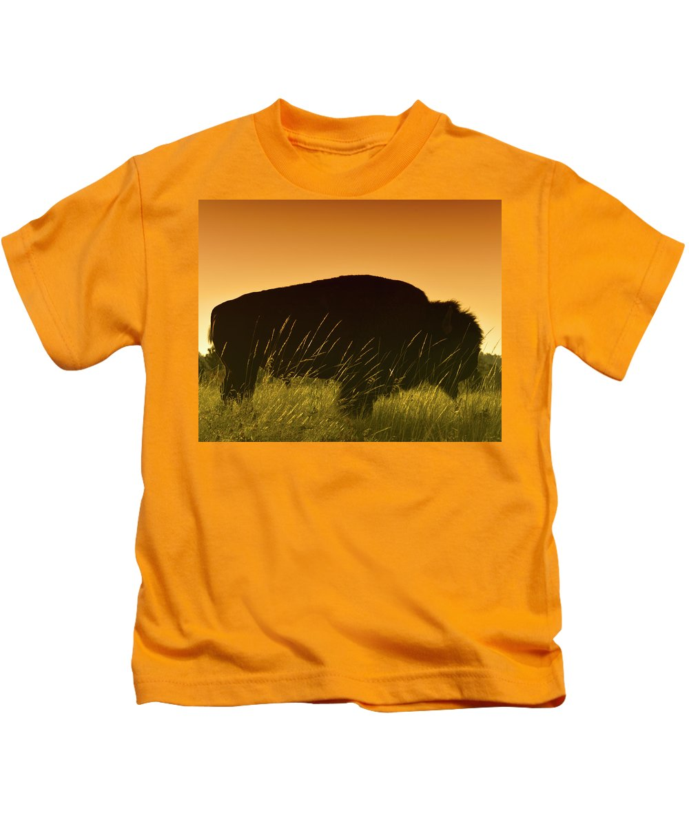 Buffalo Kids T-Shirt featuring the photograph Tatanka by Don Spenner