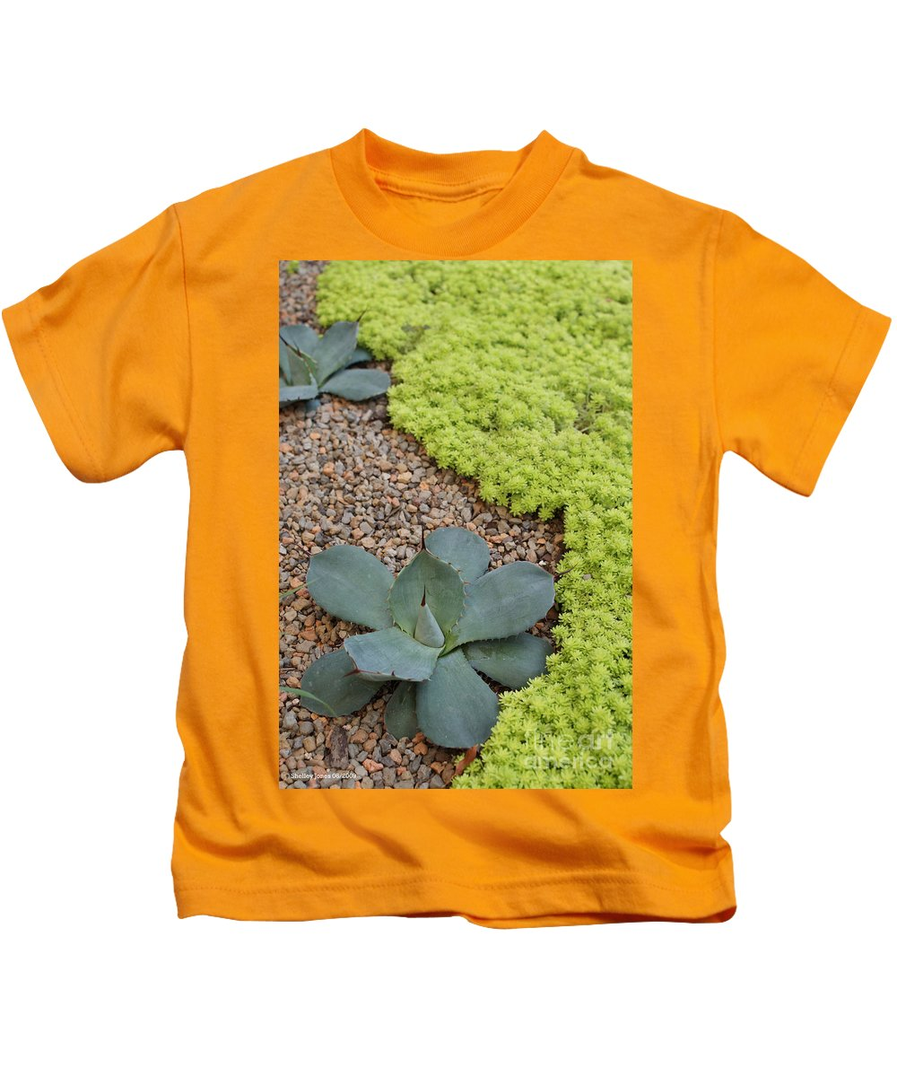 Cacti Kids T-Shirt featuring the photograph Texture by Shelley Jones