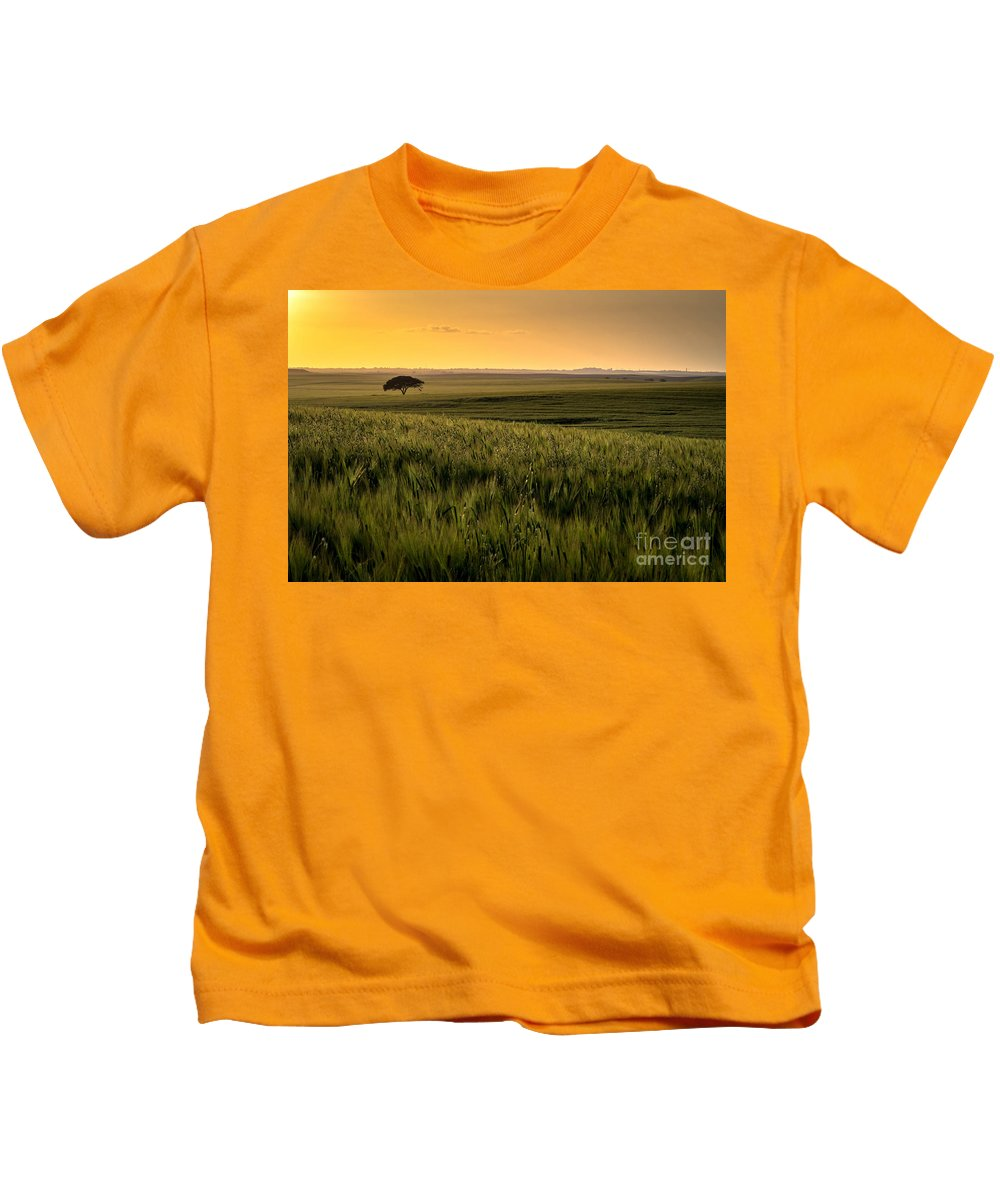 The Lonely Tree Kids T-Shirt featuring the photograph The Lonely Tree, Israel Landscape by Nir Ben-Yosef