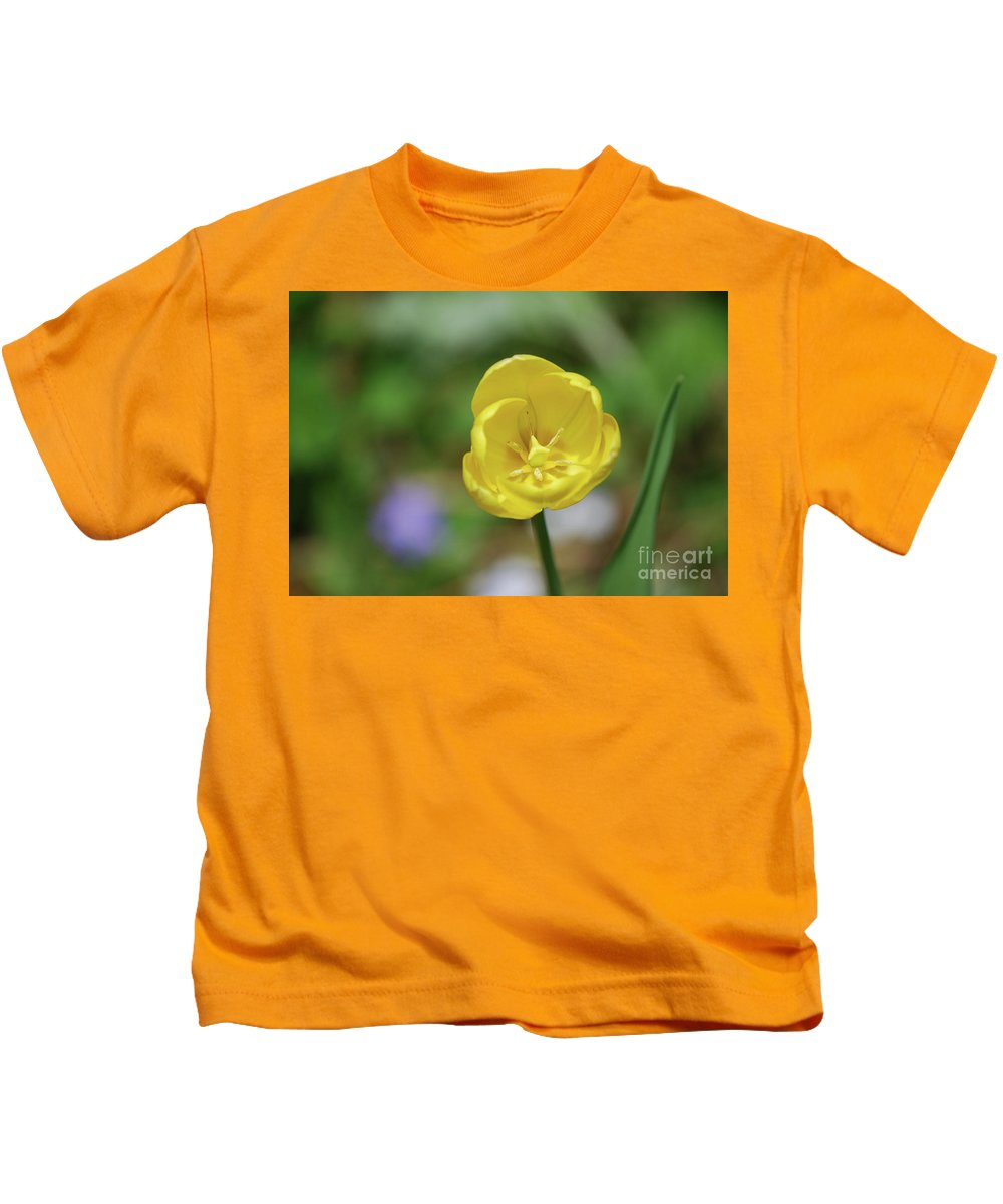 Tulip Kids T-Shirt featuring the photograph Very Pretty Flowering Yellow Tulip Blooming In A Garden by DejaVu Designs