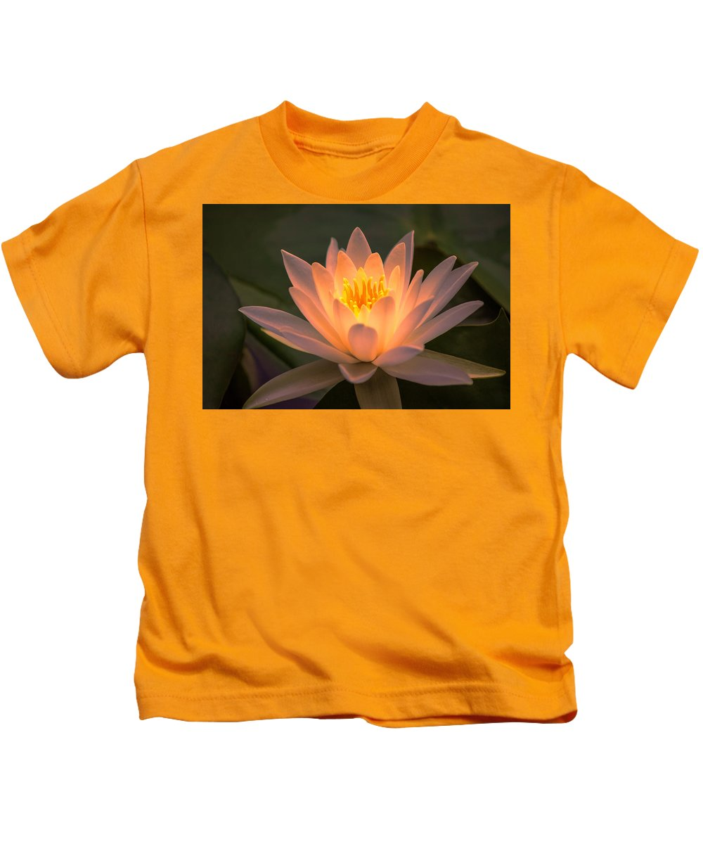 Pond Kids T-Shirt featuring the photograph Water Lily by Judy Witter