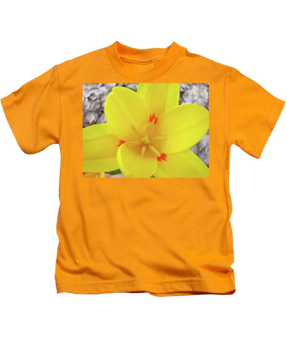 �tulips Artwork� Kids T-Shirt featuring the photograph Yellow Tulip Flower Spring Flowers Floral Art Prints by Baslee Troutman