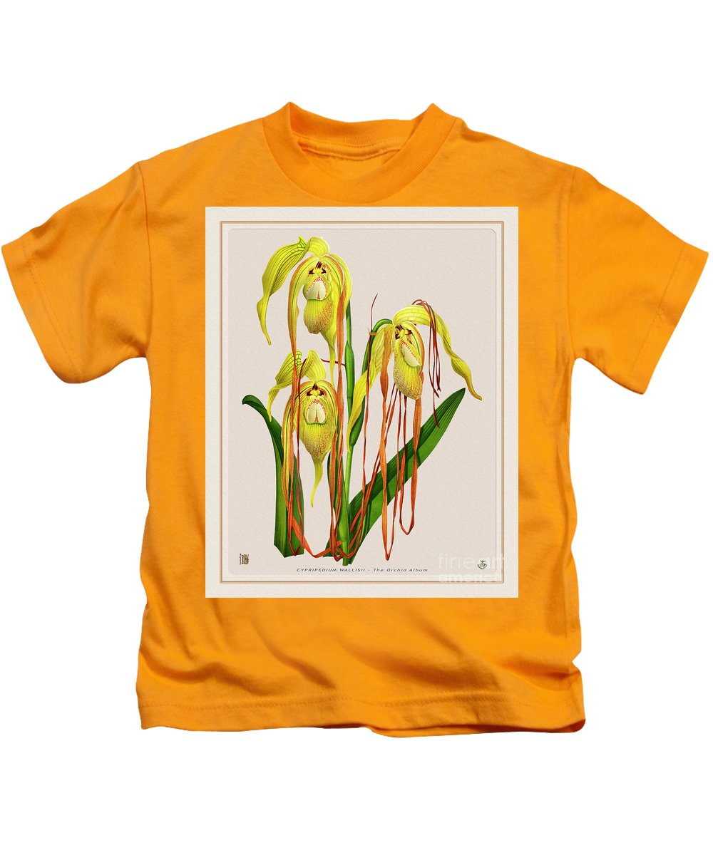 Colors Kids T-Shirt featuring the drawing Orchid Vintage Print On Colored Paperboard by Baptiste Posters
