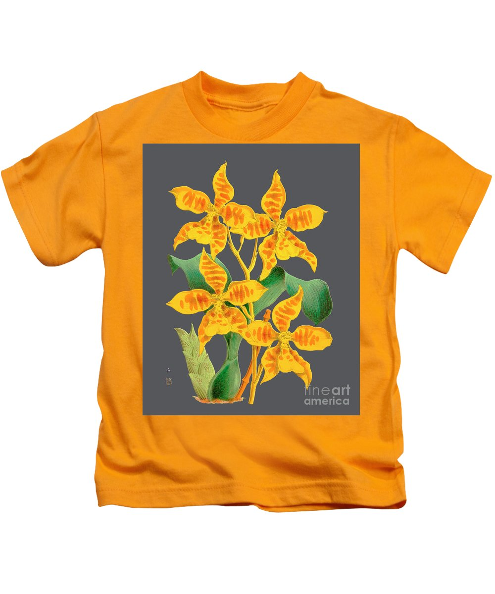 Vintage Kids T-Shirt featuring the drawing Orchid Old Print by Baptiste Posters