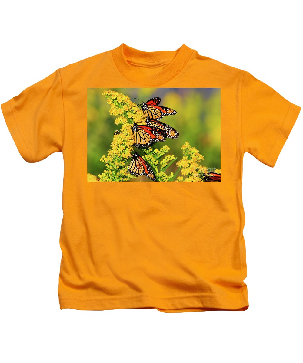 Butterfly Kids T-Shirt featuring the photograph Monarch Gathering 2 by Roger Becker