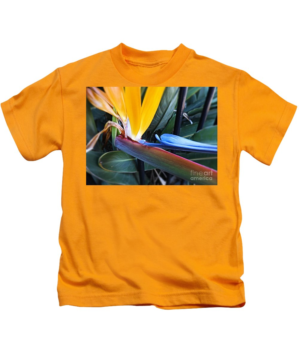 Bird Of Paradise Kids T-Shirt featuring the photograph Vibrant Bird Of Paradise #2 by Trudee Hunter