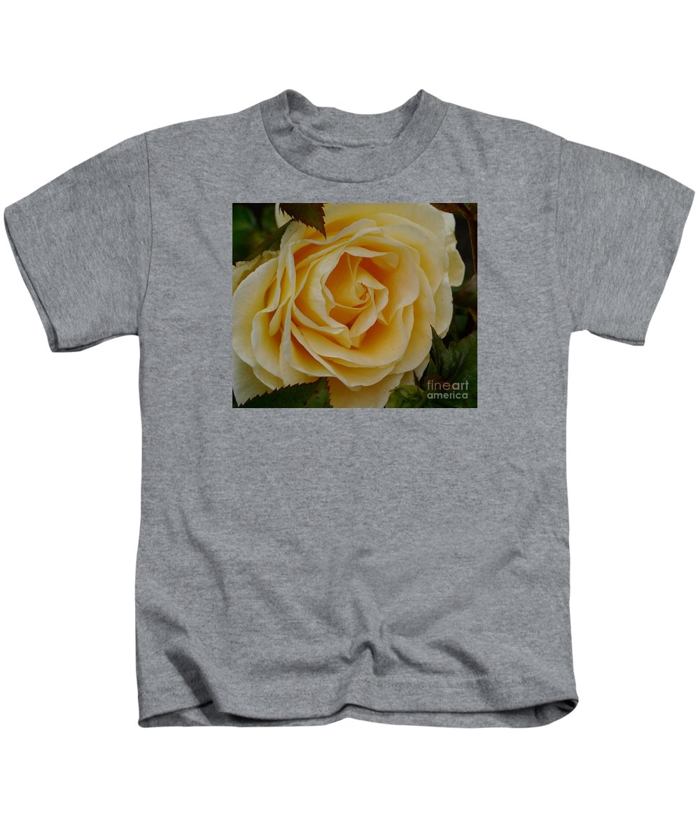 Rose Kids T-Shirt featuring the photograph Golden Celebration by Christiane Schulze Art And Photography