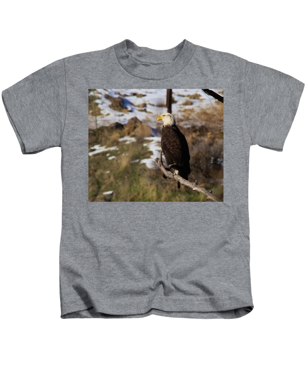 Eagles Kids T-Shirt featuring the photograph An Eagle Perched  by Jeff Swan