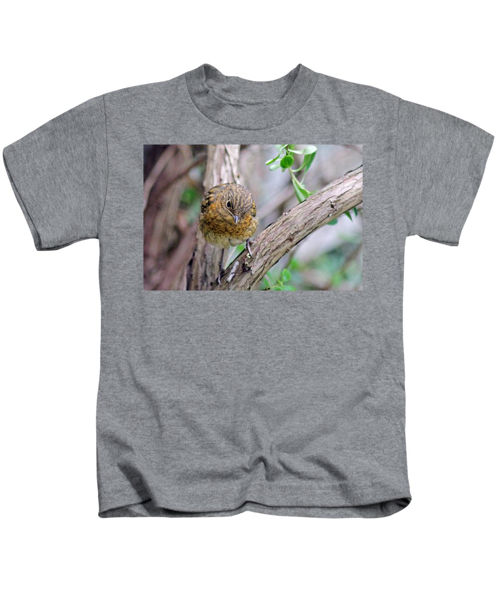 Baby Robin Kids T-Shirt featuring the photograph Baby Robin by Tony Murtagh