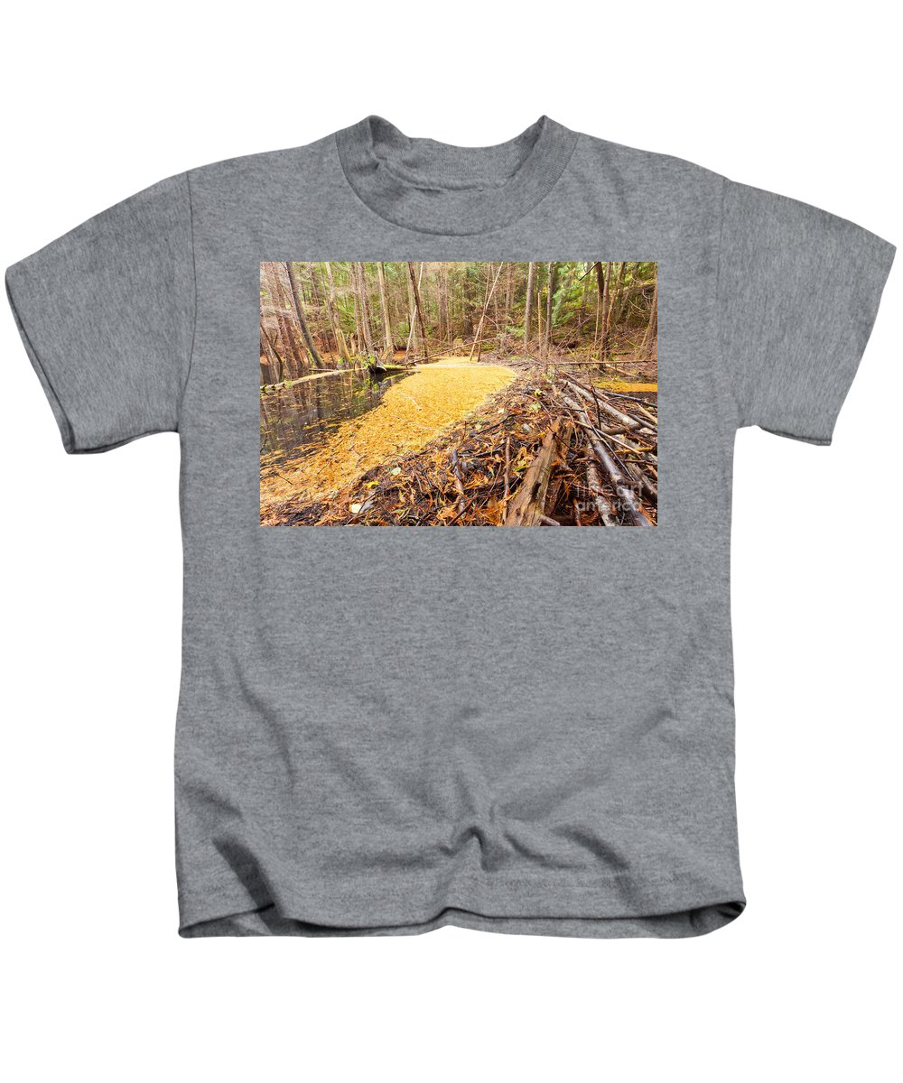 Aquatic Kids T-Shirt featuring the photograph Beaver Dam In Fall Colored Forest Wetland Swamp by Stephan Pietzko