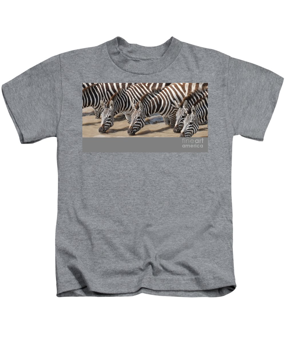 Africa Kids T-Shirt featuring the photograph Common Zebras Drinking Water by John Shaw