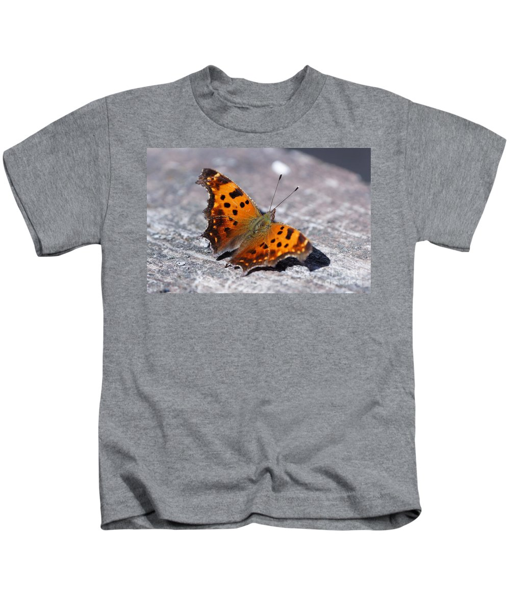 Butterfly Kids T-Shirt featuring the photograph Eastern Comma Butterfly by Lori Tordsen