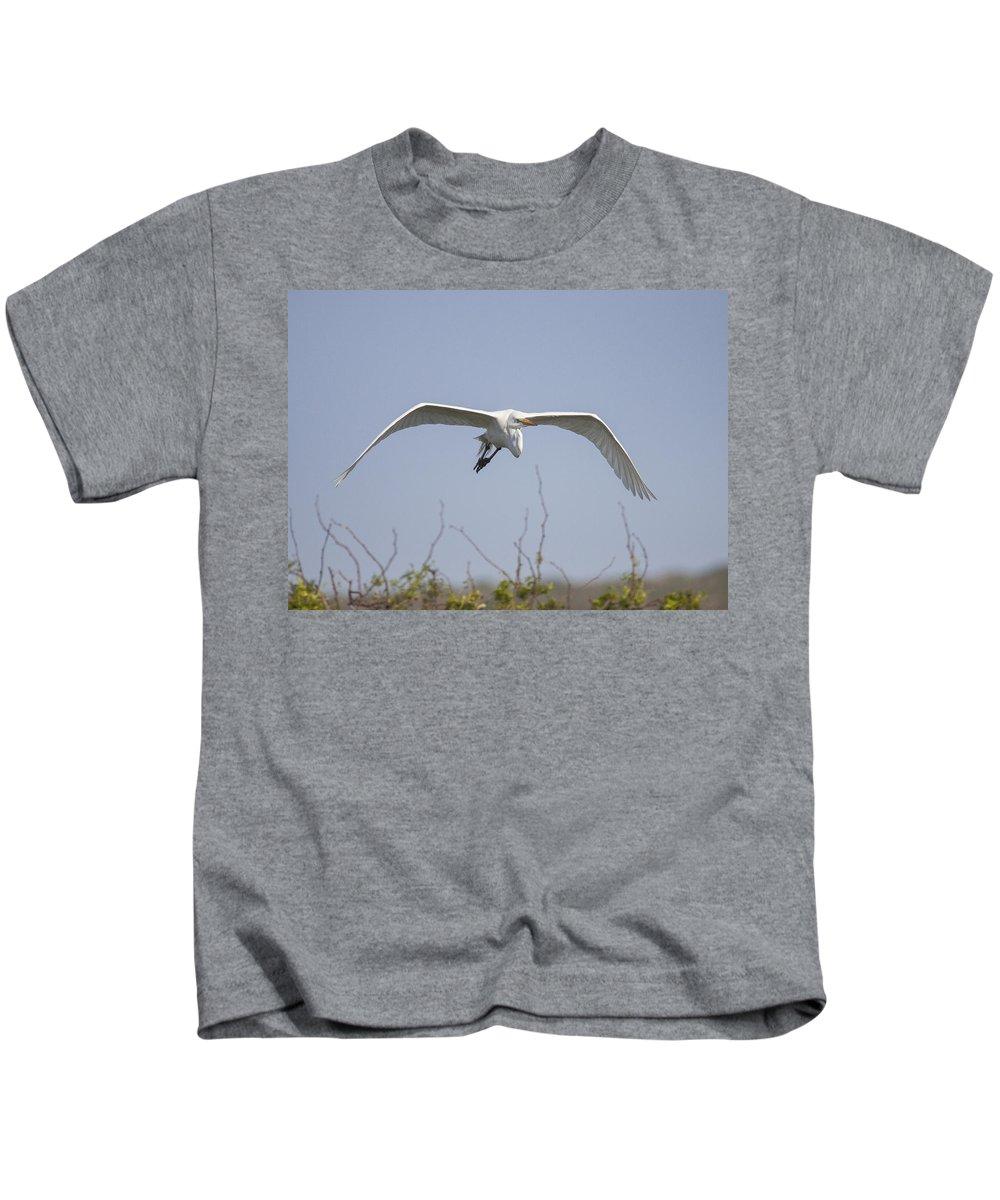 Doug Lloyd Kids T-Shirt featuring the photograph Great Egret by Doug Lloyd