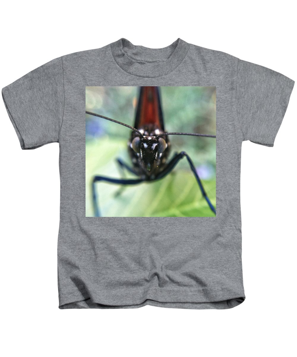 Monarch Kids T-Shirt featuring the photograph Monarch Stare by Stacy Egnor