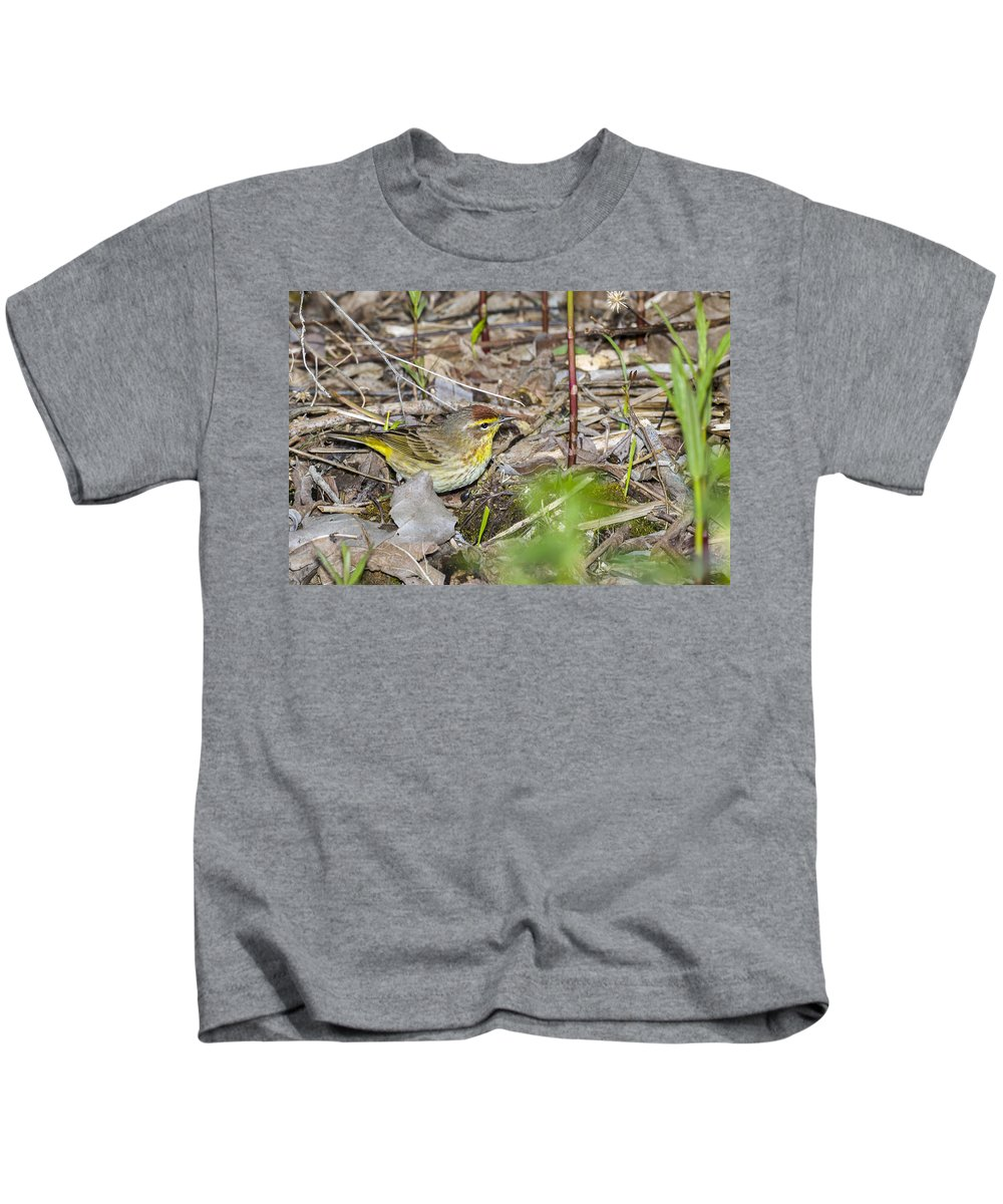 Animal Kids T-Shirt featuring the photograph Palm Warbler by Jack R Perry