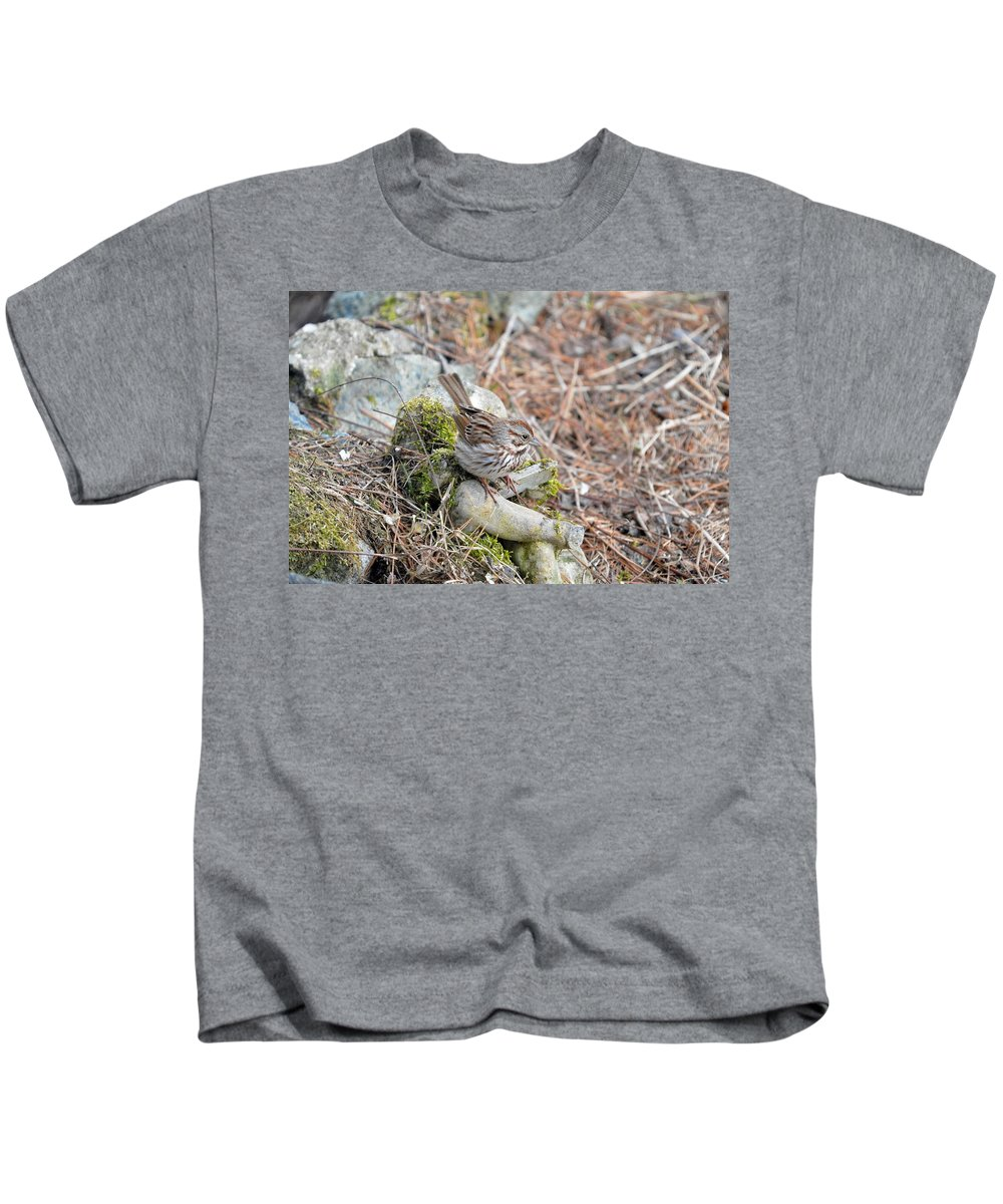 Song Sparrow Kids T-Shirt featuring the photograph Sparrow by Thomas Phillips